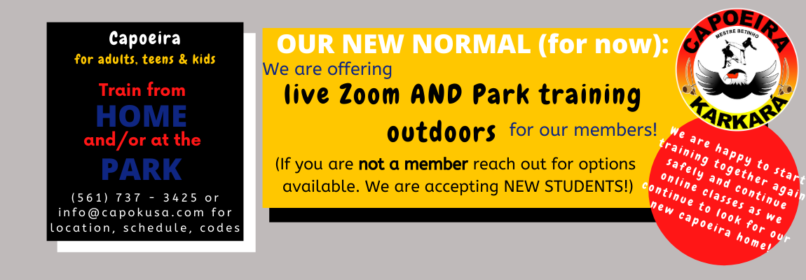 Park & Zoom Classes